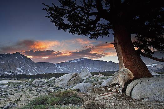 Langley Sunset by Nolan Nitschke