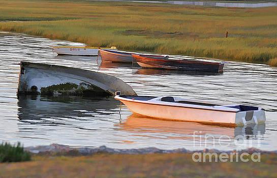 Languid Lagoon by Josephine Cohn