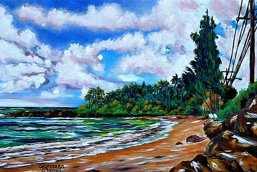Laniakea Beach by Larry Geyrozaga