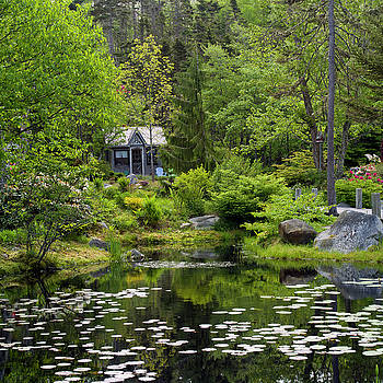 Large Pond by Adam Gibbs
