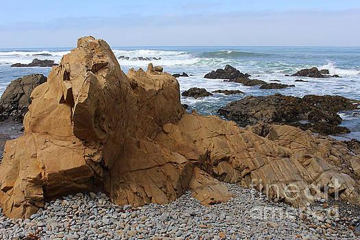 Large Rock by Katherine Erickson