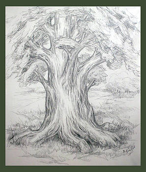 Large Shady Tree by Ruth Renshaw