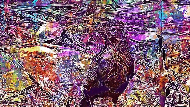 Lark Bird Animal Wildlife Fauna  by PixBreak Art