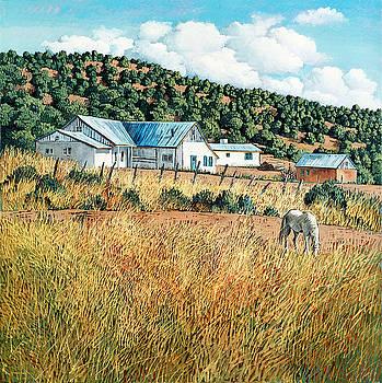 Las Trampas by Donna Clair