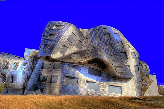Las Vegas Brain Institute by John Johnson