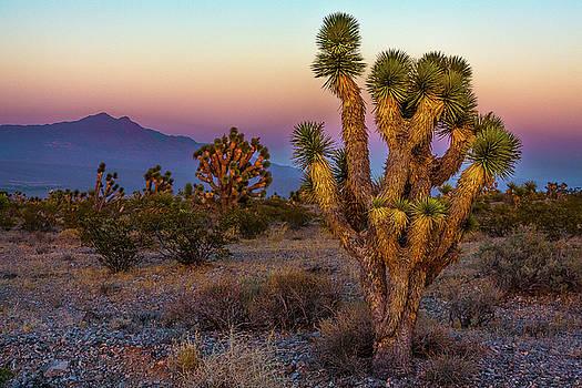 Las Vegas countryside by Yves Keroack