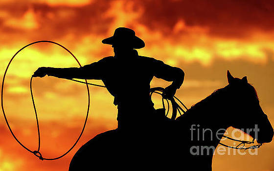 Lasso Sunset Cowboy by Shawn Hamilton