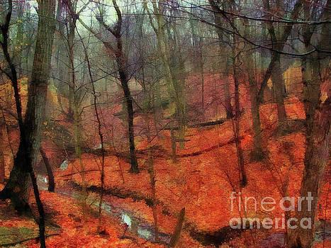 Last Days Of Autumn  by Cedric Hampton