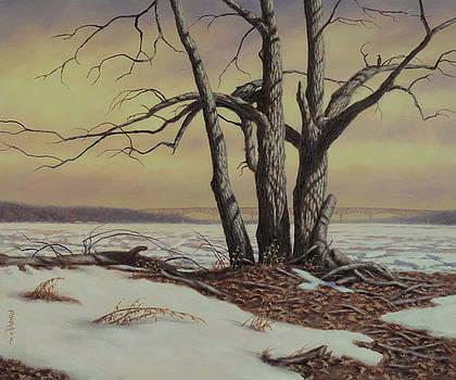 Last Hold Of Winter by Barry DeBaun