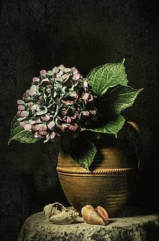 Last Hydrangea of the Season by Jerri Moon Cantone