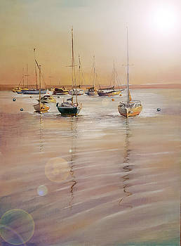 Last Light at Keyhaven by Penny Golledge