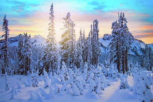 Last Light at Rainier by Andrew Zuber