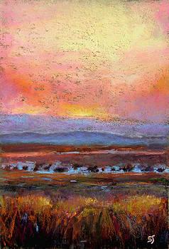 Last Light by Susan Jenkins