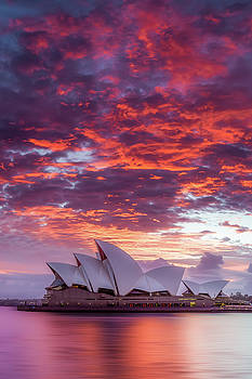 Last Moment in Sydney by Dave Gordon