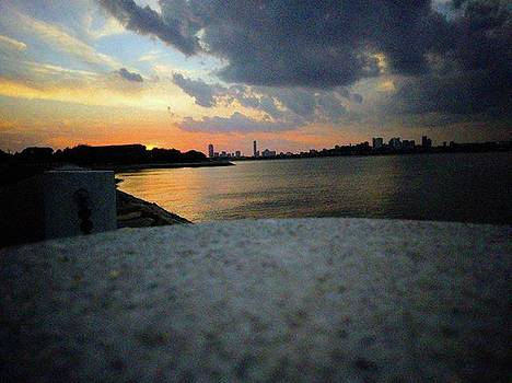 Last Night's Sunset From Jfk Library by Annette Holland