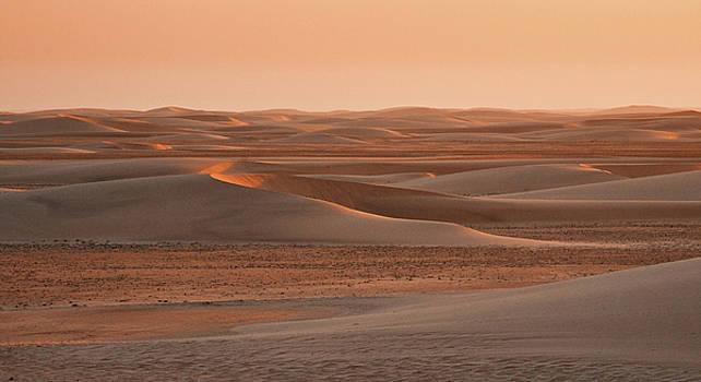 Sylvia J Zarco - Last rays of sand