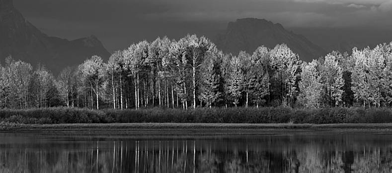 Last Sentinels Greyscale Pano by David Andersen