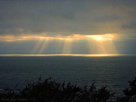 Joyce Dickens - Last Sunbeams Of The Day Two