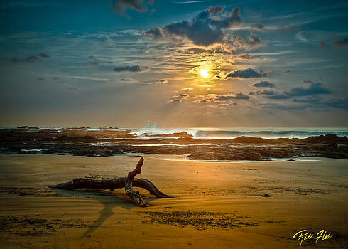 Late Afternoon Costa Rican Beach Scene by Rikk Flohr