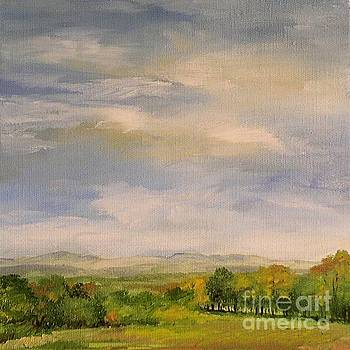 Late Afternoon in Vermont  by Laurie Rohner