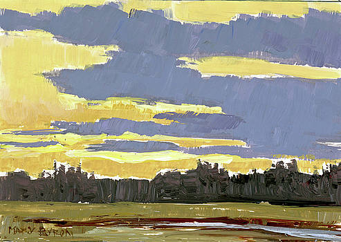 Mary Byrom - Late Afternoon Marsh