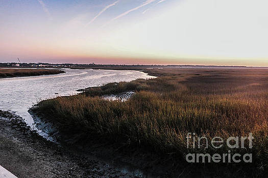 Late Afternoon on the Broad Creek Marsh by Thomas Marchessault