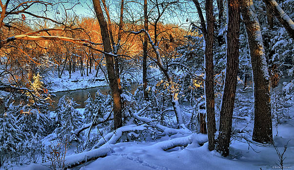 Late Afternoon Winter Light by Bruce Morrison