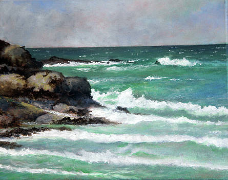 Late August Day,Cornwall by John Tregembo