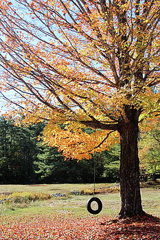 Late Autum by Jeffrey Akerson