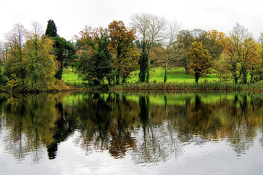 Late Autumn Reflections - Somerset by Susie Peek