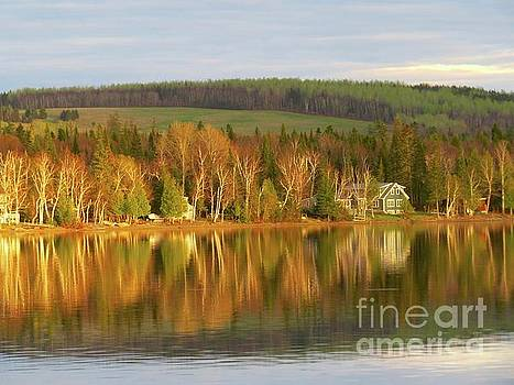 Late day reflections by Brenda Ketch