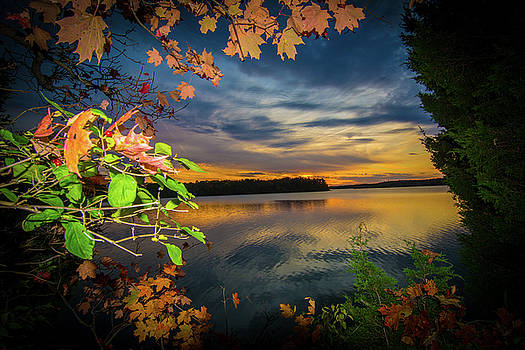 Randall Branham - late evening lake leaf sunset