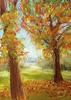 Late Fall Colors - Autumn Landscape by Barry Jones