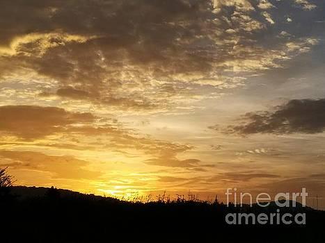 Maria Urso - Late July Sunrise