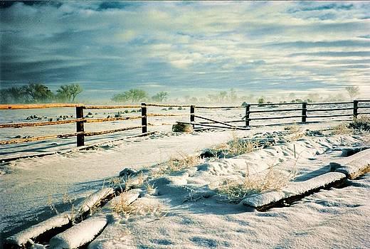 Late Spring Snow  by Diana Dearen
