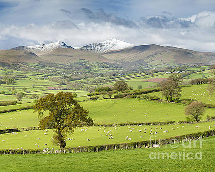 Late spring snow on the peaks of the Brecon Beacons National Park, Wales. by Justin Foulkes