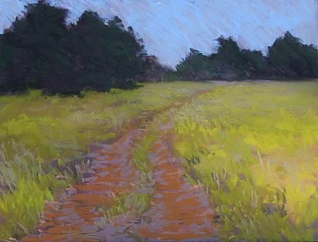 Late Summer Field by Jan Frazier