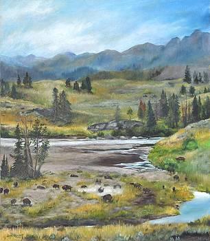 Late Summer in Yellowstone by Lori Brackett