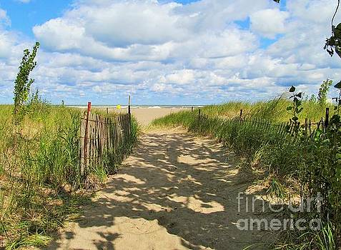 Late Summer Stroll by Marcia Breznay