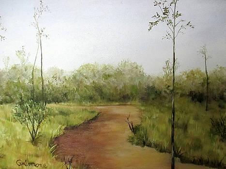 Late Summer Walk by Roseann Gilmore