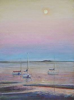 Late Sun on the Seascout by Laura Balboni Craciun