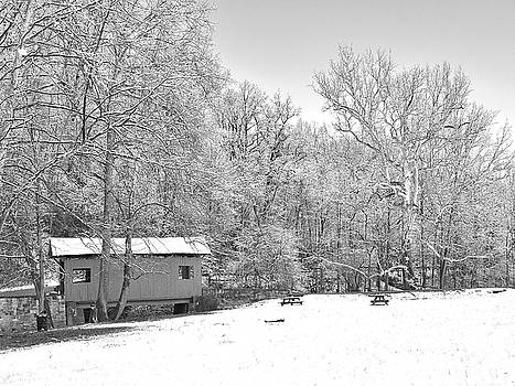 Late Winter Snowfall in Western Pennsylvania by Digital Photographic Arts