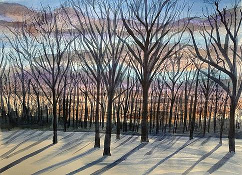 Late Winter's Afternoon by John Prenderville