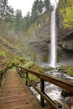 Latourell Falls Waterfall and Bridge Columbia River Gorge Oregon by Dustin K Ryan
