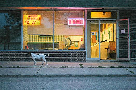 Laundromat Open by Steve Augustin
