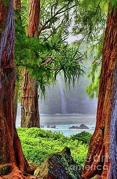 Laupahoehoe Hawaii by DJ Florek