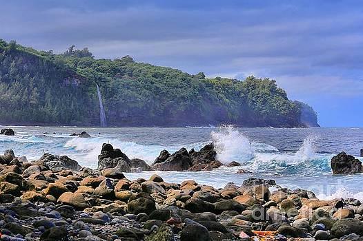 Laupahoehoe Point by DJ Florek