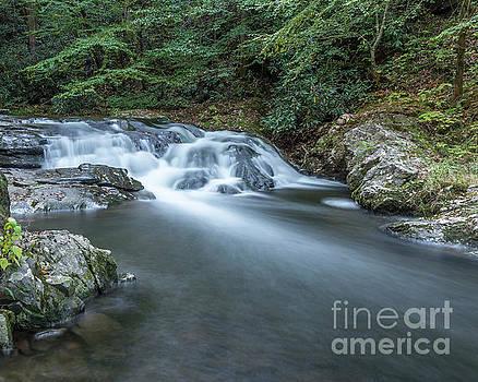 Laural Creek Cascade by Patrick Shupert