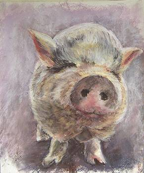 Laurel, a lavender pig by Elizabeth Ellis