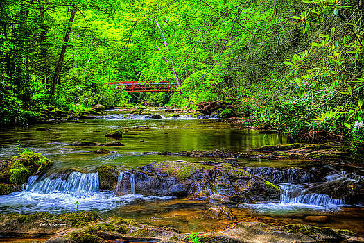 Laurel Creek by Dale R Carlson